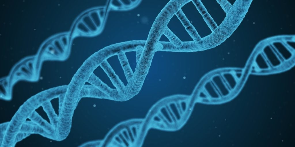 Genetics can cause hair loss